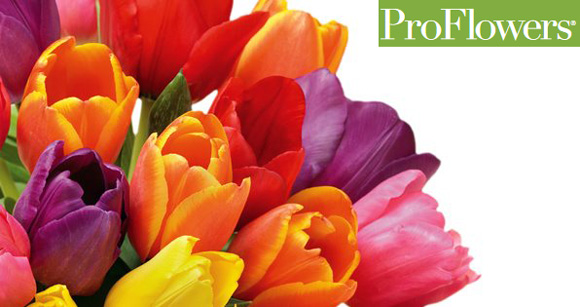 pro flower coupons free shipping