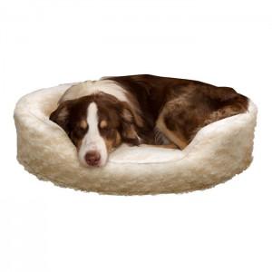 pet-bed-11