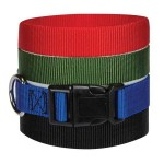 pet-belt-1