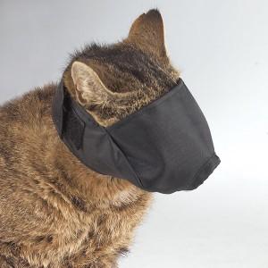 pet-mask-1
