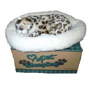 breathing-leopard-wmu-1